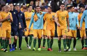 the-caltex-socceroos-celebrated-their-empathic-result-in-front-of-over-35000-fans-at-full-time_1twh87m7ln4gd1fm57mwsm0i07